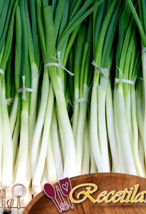 Cebolla Verde Romesco (Calçots)