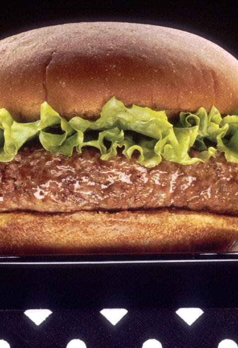 Hamburguesas Bison Burger