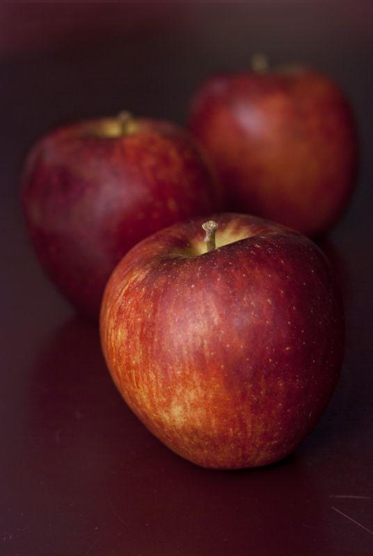 Pintada con frutas de otoño