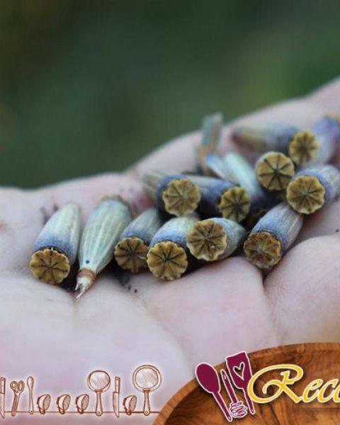 Semillas de amapola y rollos de albaricoque con levadura líquida