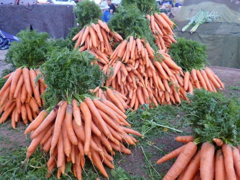 Zanahorias orientales